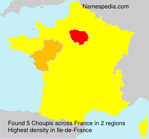 Surname Choupis in France