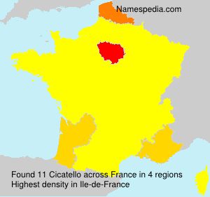 Surname Cicatello in France
