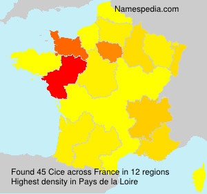 Surname Cice in France