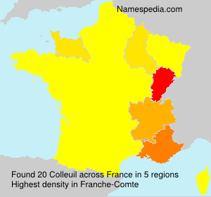 Surname Colleuil in France