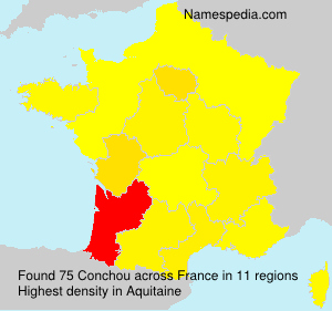Surname Conchou in France