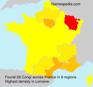 Surname Congi in France