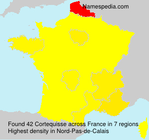 Surname Cortequisse in France