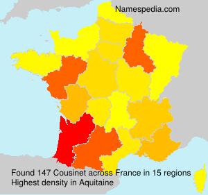 Surname Cousinet in France