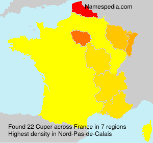 Surname Cuper in France