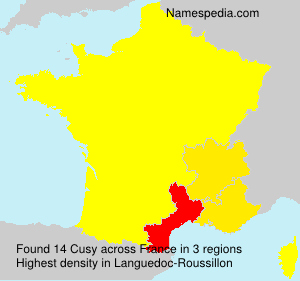 Surname Cusy in France