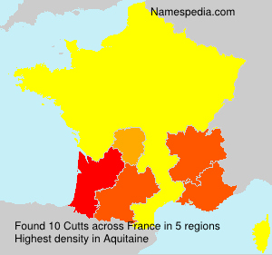 Surname Cutts in France