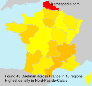 Surname Daelman in France