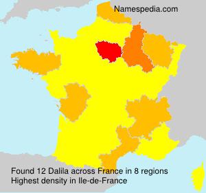 Surname Dalila in France