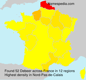 Surname Debeer in France