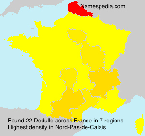 Surname Dedulle in France