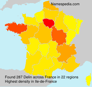 Surname Delin in France