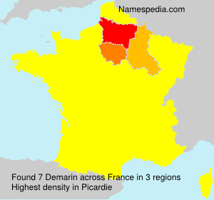 Surname Demarin in France