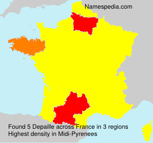 Surname Depaille in France