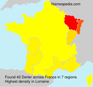 Surname Derler in France