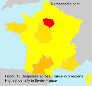 Surname Despoisse in France