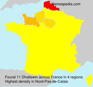 Surname Dhallewin in France