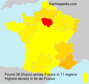 Surname Dhaoui in France