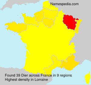 Surname Dier in France