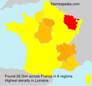 Surname Dim in France
