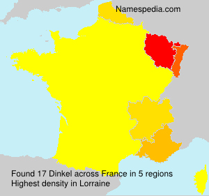 Surname Dinkel in France