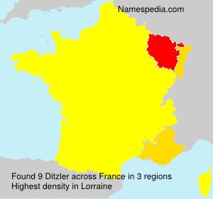 Surname Ditzler in France