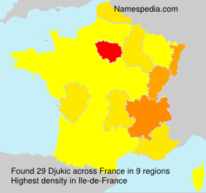 Surname Djukic in France