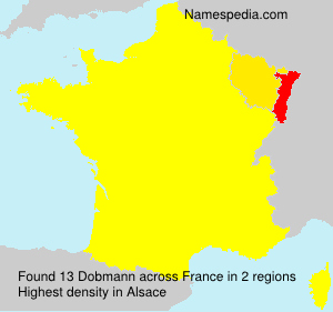 Surname Dobmann in France