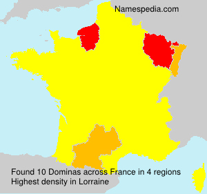 Surname Dominas in France