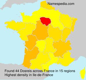 Surname Dosreis in France