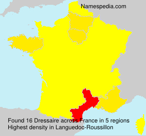 Surname Dressaire in France