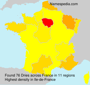 Surname Dries in France