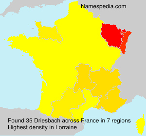 Surname Driesbach in France