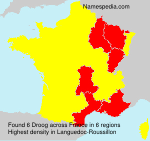 Familiennamen Droog - France