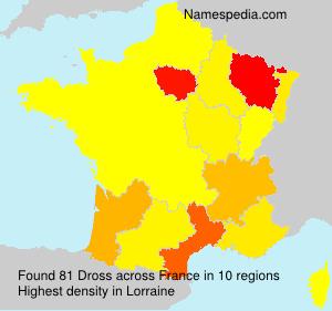 Surname Dross in France