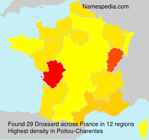 Familiennamen Drossard - France