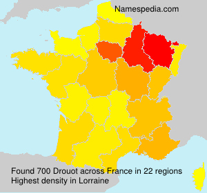 Surname Drouot in France