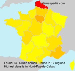 Surname Druez in France