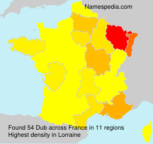 Surname Dub in France