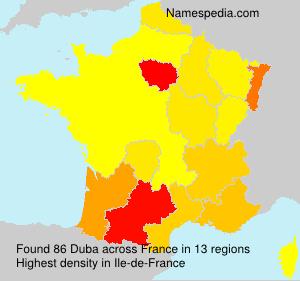 Familiennamen Duba - France