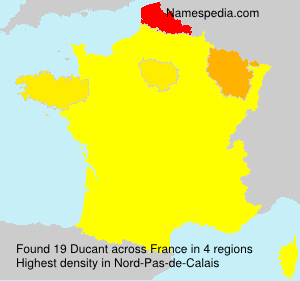 Surname Ducant in France