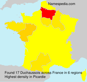 Surname Duchaussois in France