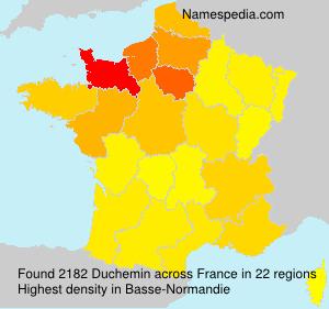 Surname Duchemin in France