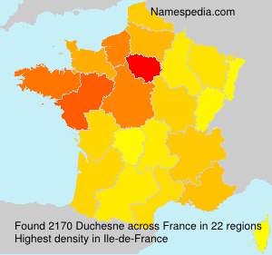 Surname Duchesne in France