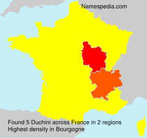 Surname Duchini in France