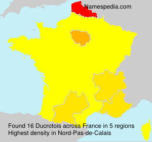 Surname Ducrotois in France