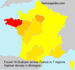 Surname Duduyer in France
