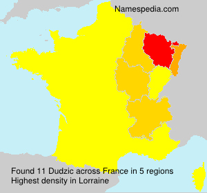 Surname Dudzic in France