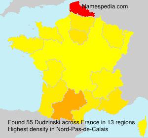 Surname Dudzinski in France