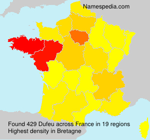 Surname Dufeu in France